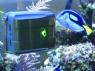 Робот для аквариумов RoboSnail
