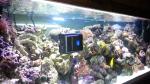 Робот для аквариумов RoboSnail - фото 3